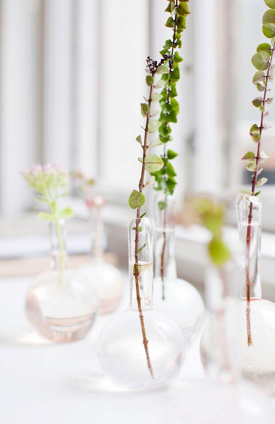 Minimalism plant decor   Girlfriend is Better
