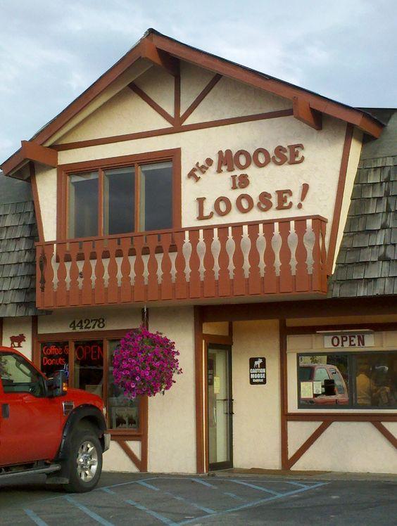 The Moose is Loose coffee shop in Soldotna Alaska | Girlfriend is Better