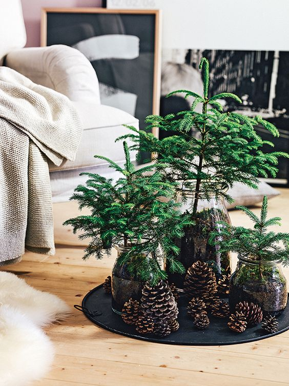 Christmas Tree vignette using vases and pine cones   Hygge decor   Girlfriend is Better