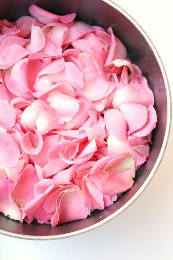 Fresh rose water skin toner DIY   Girlfriend is Better