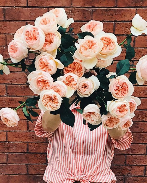 Rose water skin toner facial beauty   Girlfriend is Better