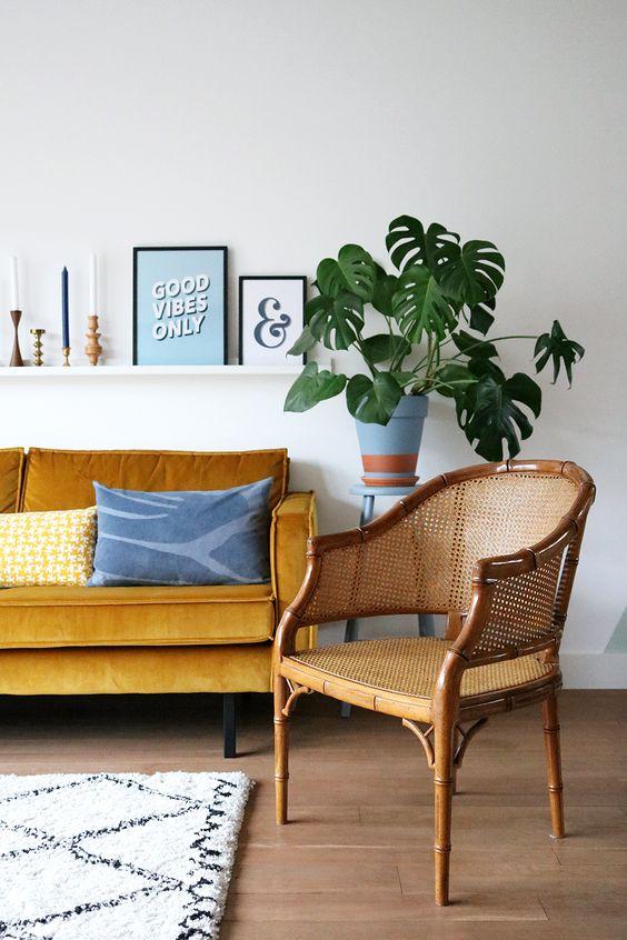Monstera Deliciosa tropic houseplant Bohemian living room   Girlfriend is Better