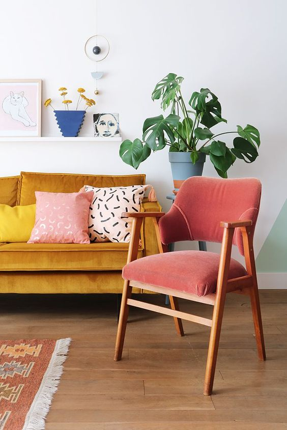 Monstera Deliciosa tropical house plant living room   Girlfriend is Better