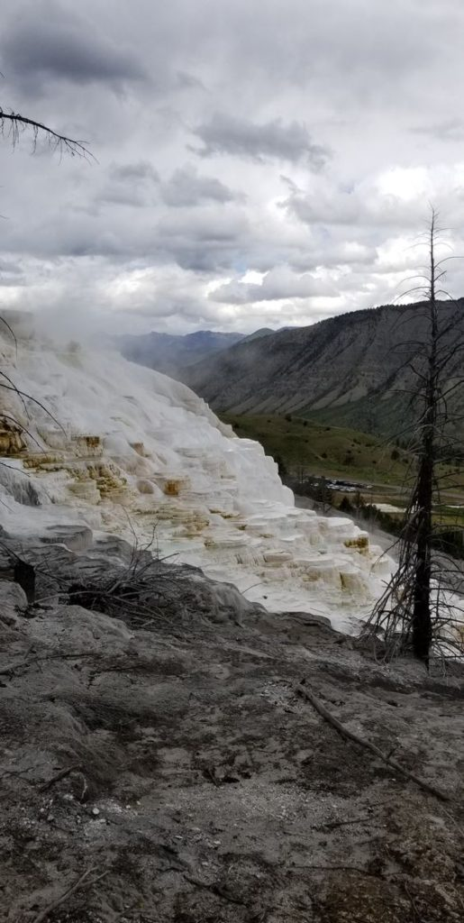 Mammoth Hot Springs   Yellowstone National Park travel guide   Girlfriend is Better