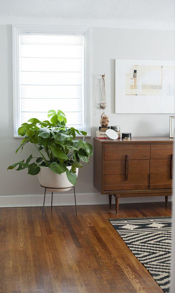 sideboard styling mid-century modern   dresser plants monstera deliciosa   Girlfriend is Better