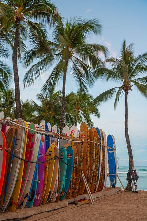 Oahu Hawaii surfboards beach   Girlfriend is Better