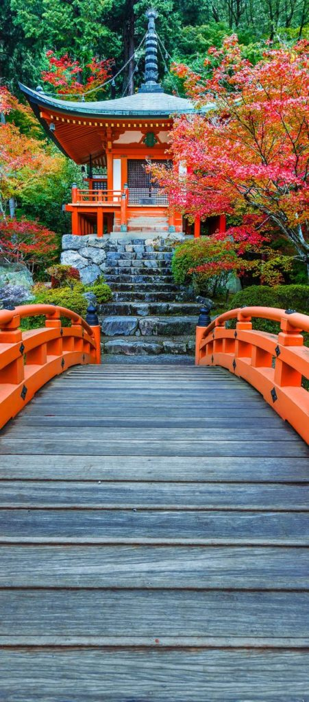 Foreign Language | Japanese temple | Girlfriend is Better