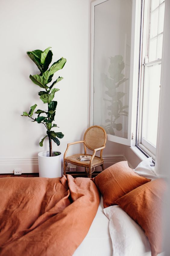 fiddle leaf figs | French country caned chair bedroom linen bedding minimalism | Girlfriend is Better