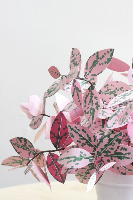 pink plants   paper fittonia leaves diy handcrafted crafts   Girlfriend is Better