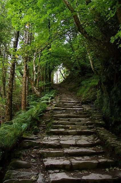 Ireland travel guide   Torc waterfall hiking Killarney National Park Ring of Kerry   Girlfriend is Better