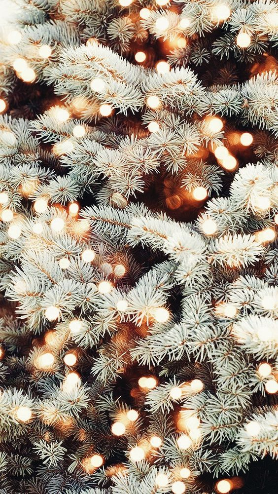 cozy Christmas | tree white lights Hygge | Girlfriend is Better