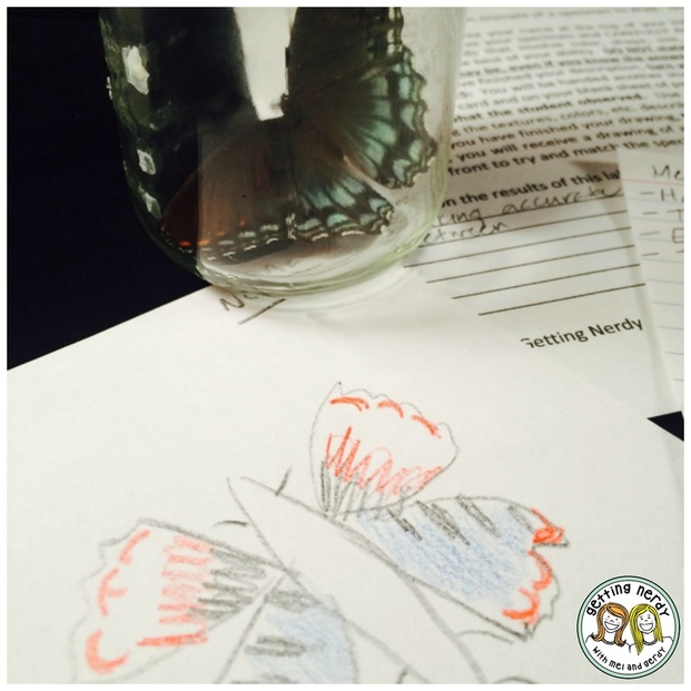 Use a drawing and describing lab to drive home the importance of observation in science.
