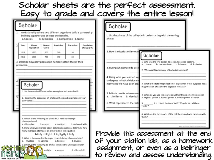 Grade lab stations easily with a scholar assessment sheet!