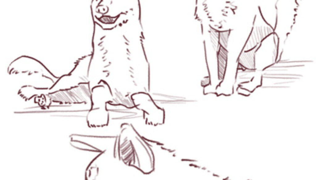 moms_not_wipin_your_bum_Process-dog-01