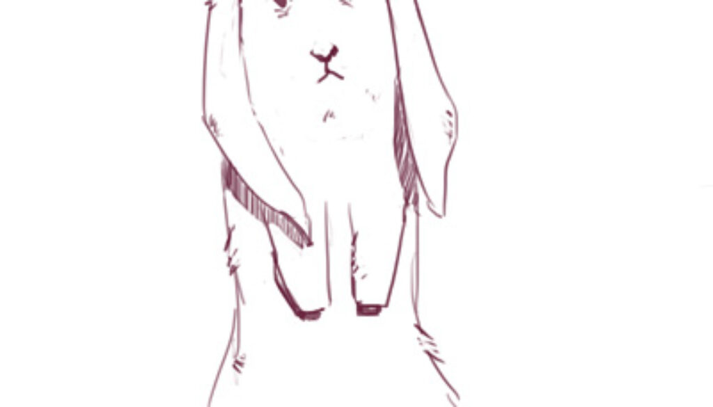 moms_not_wipin_your_bum_Process-rabbit-02