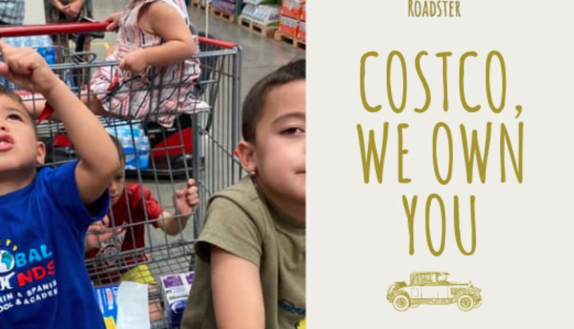 costco_we_own_you