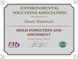 Mold Inspection Certification
