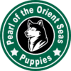 Pearl of the Orient Seas Puppies