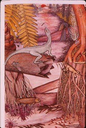 Figure 5. Permain faunas