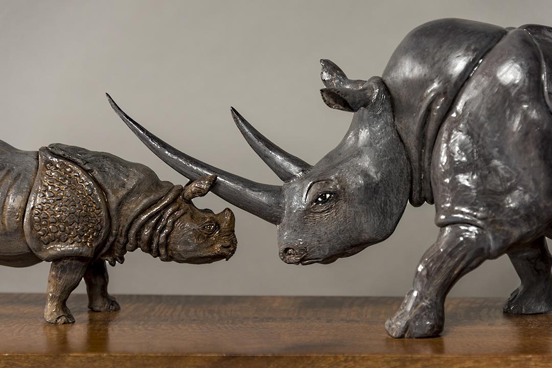 Vanishing Rhinos