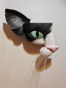 Blk & Wht Cat2