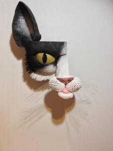 Blk&Wht Cat2