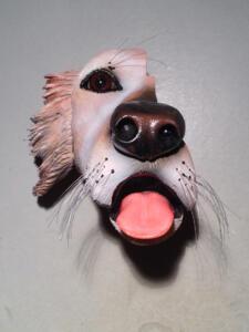 DD Dog3