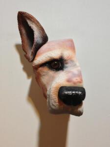 Yumis Dog 1