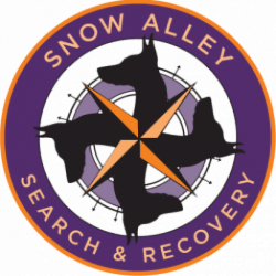 Snow Alley Search And Recovery