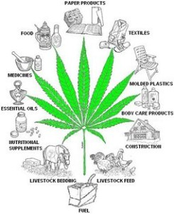 hemp-resource-tree