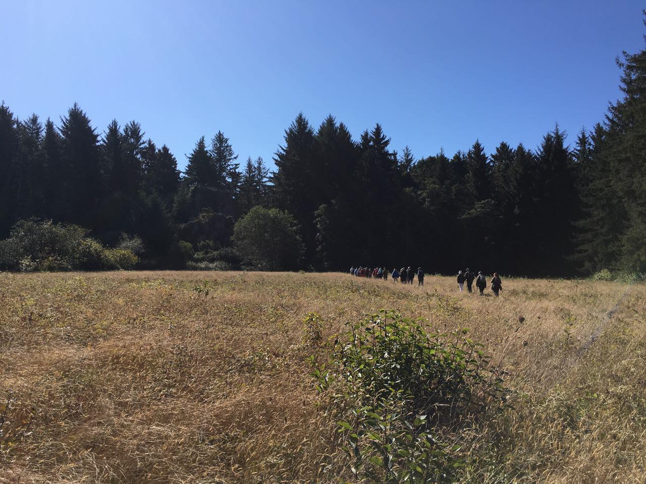 Redwoods 2017 10 01 114 Of 244