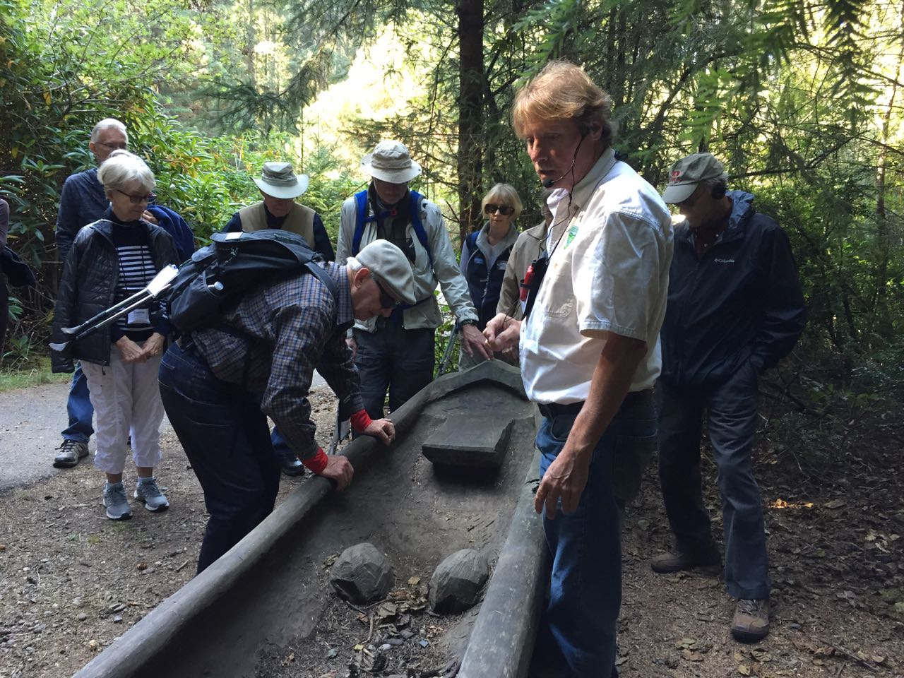 Redwoods 2017 10 01 121 Of 244