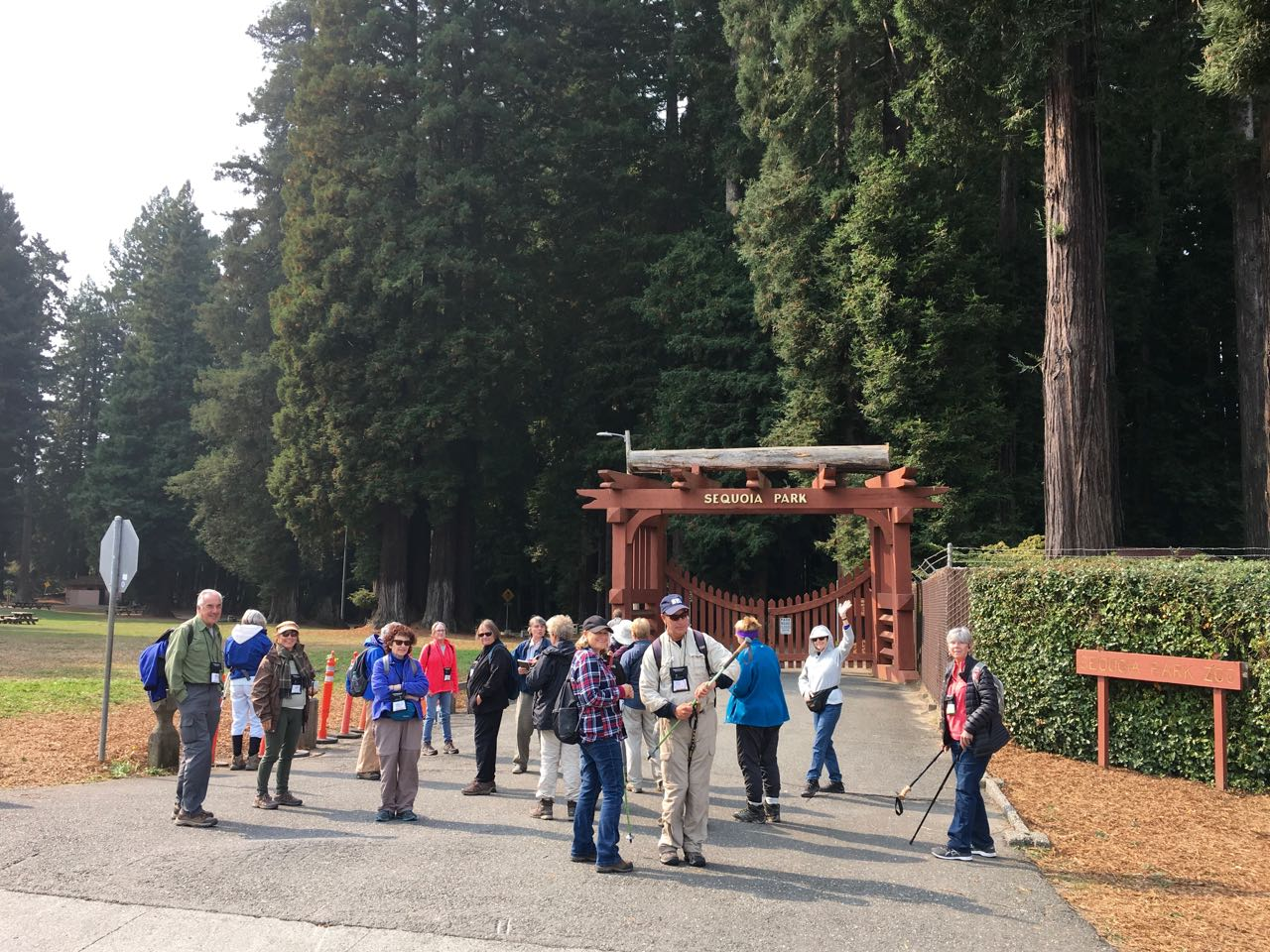 Redwoods 2017 10 08 111 Of 287