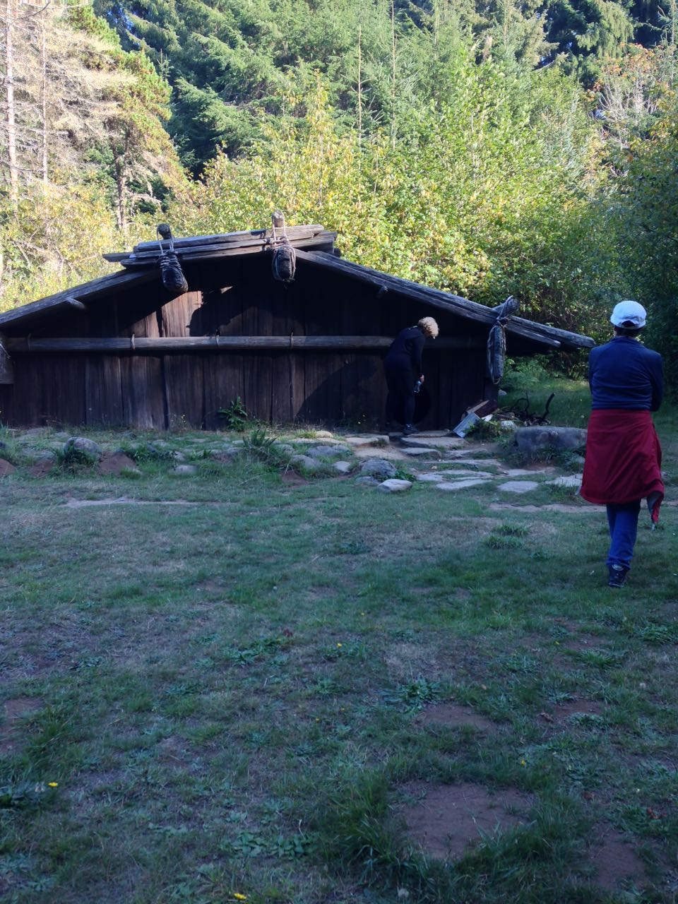 Redwoods 2017 10 08 193 Of 287
