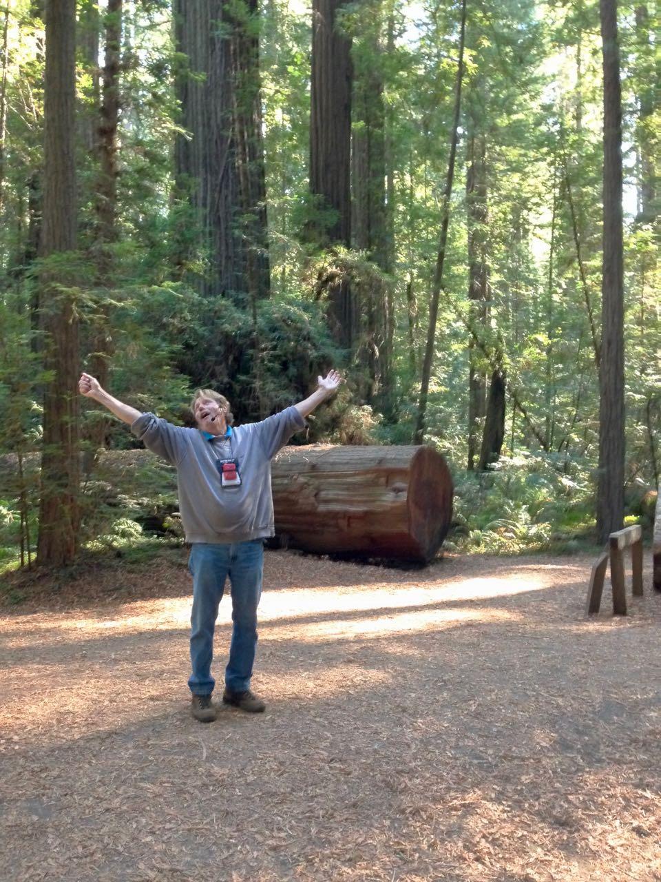 Redwoods 2017 10 08 28 Of 287