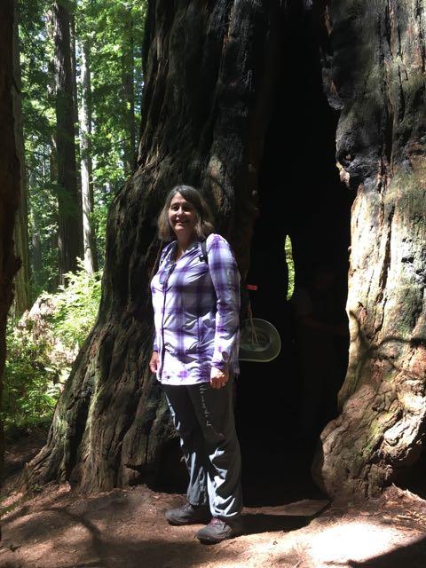 2018 06 14 Redwoods 268