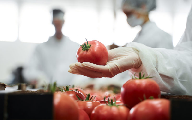 Cropped photo of a supermarket worker demonstrating the fresh produce in front of the camera