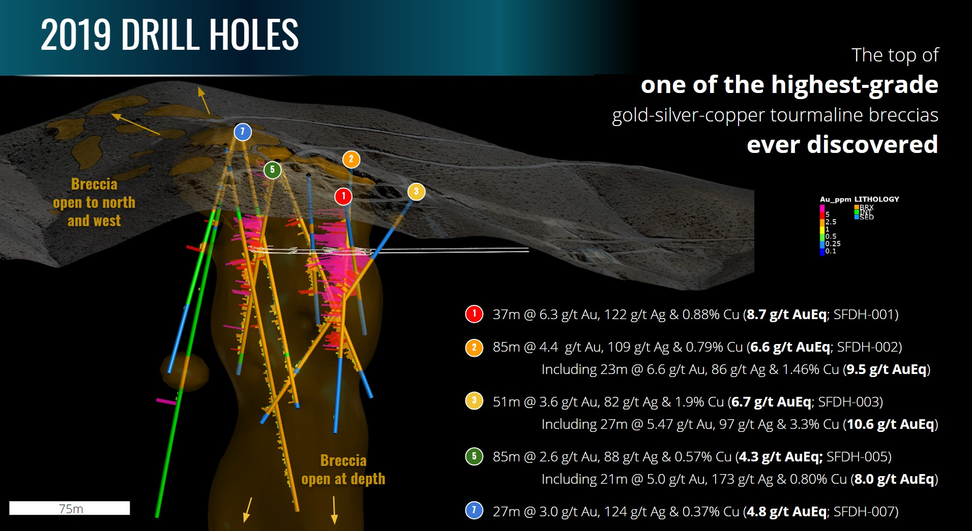 3D projection of Turmalina Metals drilling at the San Francisco de Los Andes breccia pipe with intersections. Mineralisation remains open to the north, to the west and at depth.