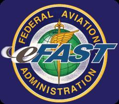 eFast-1