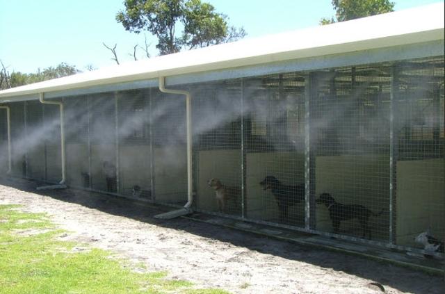 Dog Kennel Misting