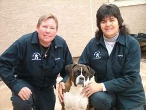 Pet Safe Phoenix Pest Control