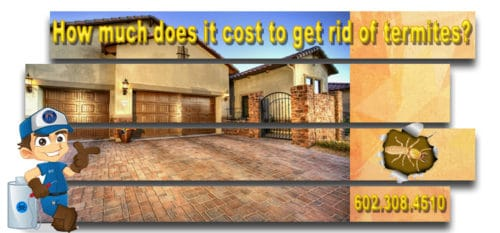 How much does it cost to get rid of termites