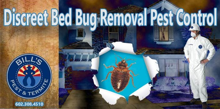 Discreet Bed Bug Removal Pest Control