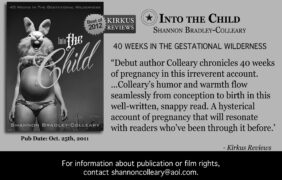 Kirkus Review Names My Book, Into The Child, One of Top 100 Indies of 2012