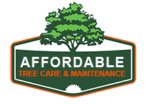 Affordable Tree Care Service Tree Trimming Pruning Tree Removal in Dallas | My Tree Service