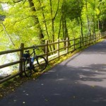 Things To Do This Summer In Farmington, CT