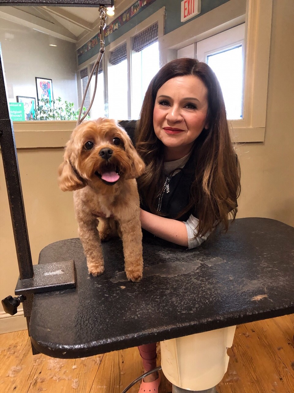 A woman holding a dog on a pet grooming table