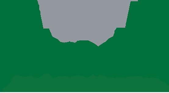 AngMar Medical Holdings