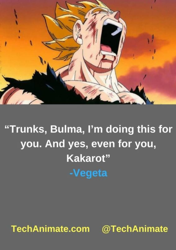 """""""Trunks-Bulma-I'm-doing-this-for-you.-And-yes-even-for-you-Kakarot""""-min"""