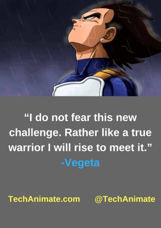 I-do-not-fear-this-new-challenge-Rather-like-a-true-warrior-I-will-rise-to-meet-it-min